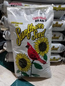 Black Oil Sunflower Seed Special